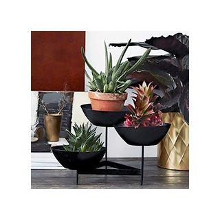 Black plants stand
