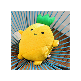 Riceananas cushion