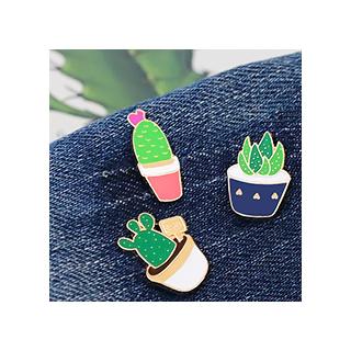 Cactus et succulente