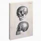 Biologica notebook