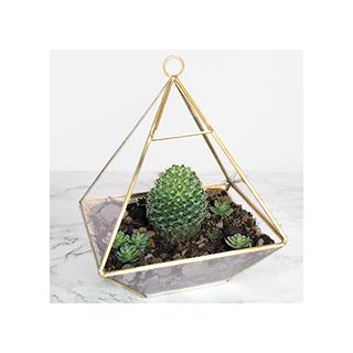 Brass pyramid terrarium