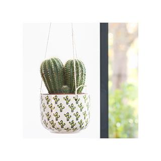 Polka dot cactus planter