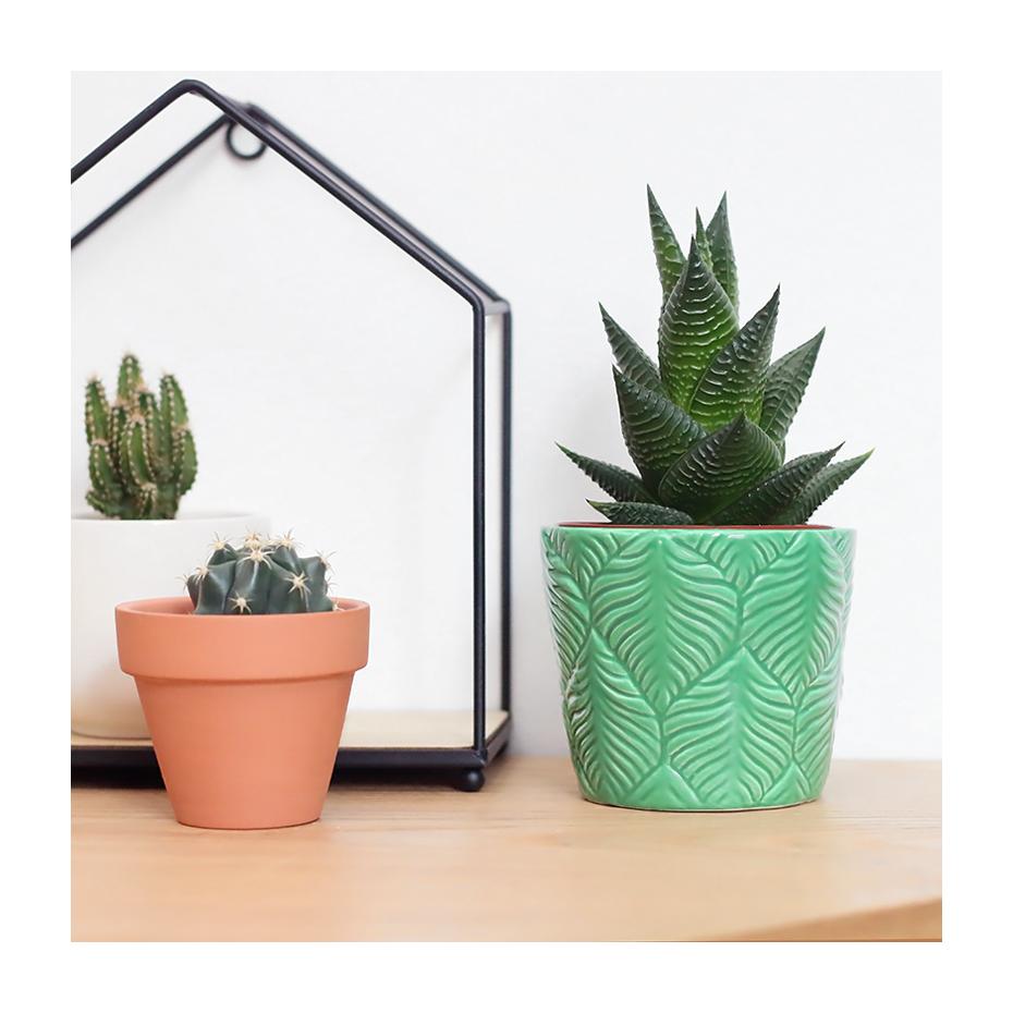 cache pot en c ramique feuilles plante exotique par sass belle. Black Bedroom Furniture Sets. Home Design Ideas