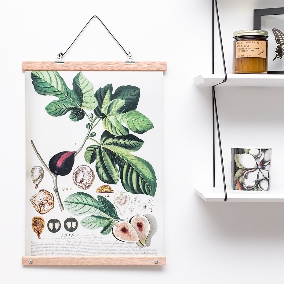 botanical art print with wood hangers. Black Bedroom Furniture Sets. Home Design Ideas
