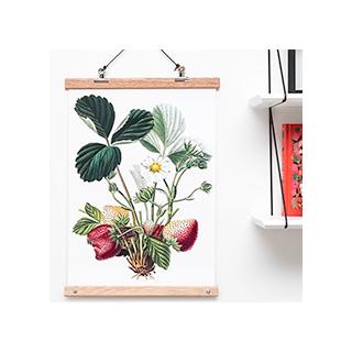 Affiche botanical - fraise