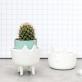Animal shaped pot