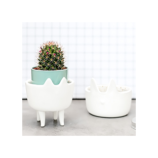 Petit pot animal