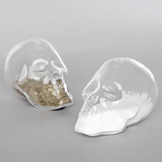 Salière et poivrière Crystal skulls