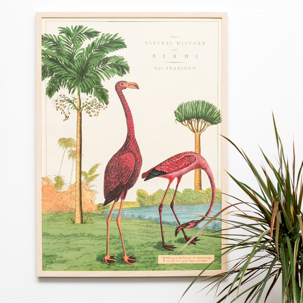 The flamingo print