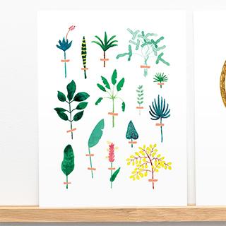 Art print - herbier