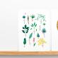 Affiche - herbier