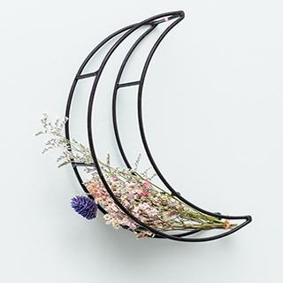 Composition lune et fleurs séchées