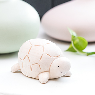 Pole pole - la tortue