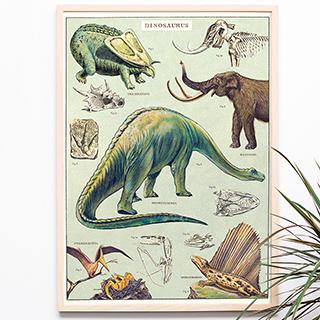Dinosaurus print