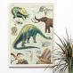 Grande affiche - Dinosaurus