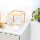 Boîte verre et bois (square)