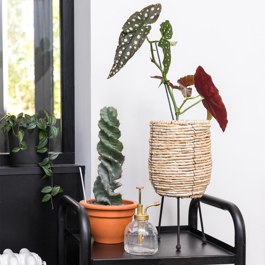 cache pot osier avec pied en m tal par bloomingville. Black Bedroom Furniture Sets. Home Design Ideas