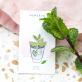 Pin's Hemleva - Mint