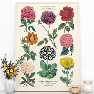 Large print - Jardin botanique