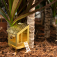 Tiny treehouse for plants