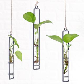 Hanging vase - Test tube