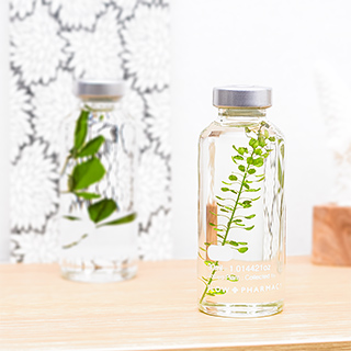 Plant in a bottle - Slow Pharmacy (Specimen 3)