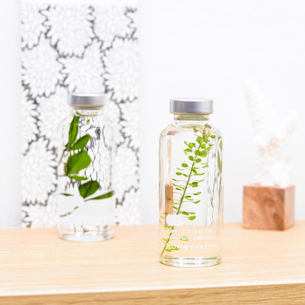 Plant in a bottle - Slow Pharmacy (Specimen 3)