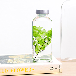 Plant in a bottle - Slow Pharmacy (Specimen 4)
