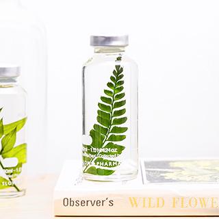 Plant in a bottle - Slow Pharmacy (Specimen 11)