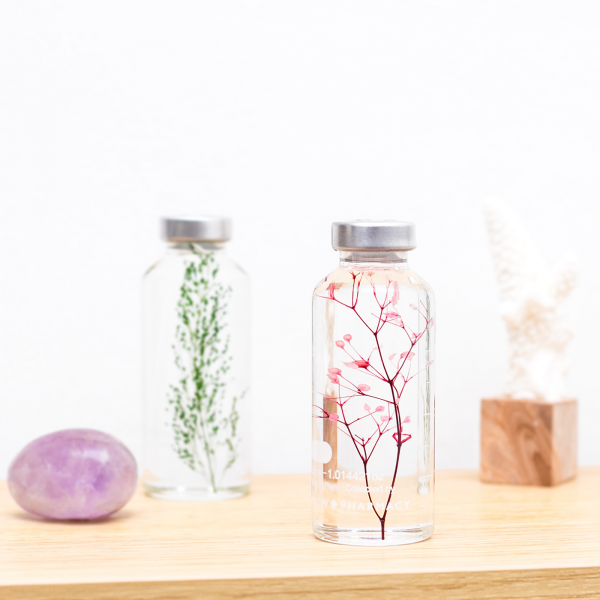 Plant in a bottle - Slow Pharmacy (Specimen 7)
