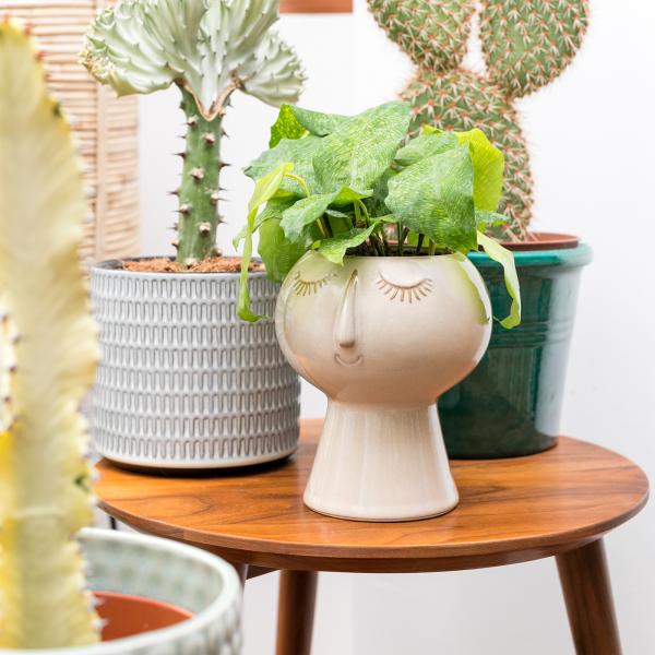 Flower pot / planter - Face imprint