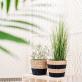Black stripe seagrass planter (large)