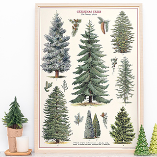 Large art print - Christmas trees