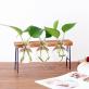 Vase set with hanger - Lab