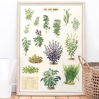 Large print - Fine herbs