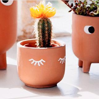 Terracotta planter - Eyes shut