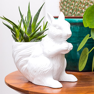 Plant pot - Squirrel