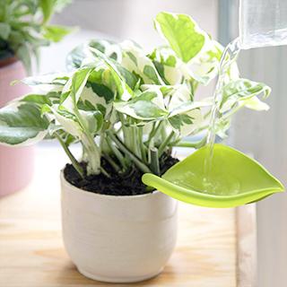 Pot watering funnel - Leaflow