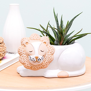 Ceramic planter - Leo the lion