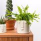 Stoneware planter - Totem (large)