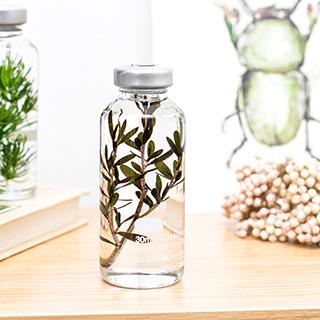 Plant in a bottle - Slow Pharmacy (Specimen 15)