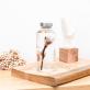 Plant in a bottle - Slow Pharmacy (Specimen 18)
