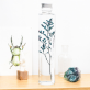 Plant in a large bottle - Slow Pharmacy 12