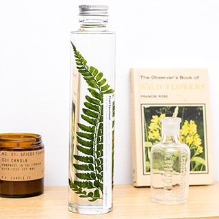 Plant in a large bottle - Slow Pharmacy 15