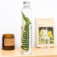 Plant in a large bottle - Slow Pharmacy 15