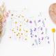 Stickers - Wild flowers