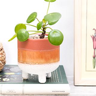 Small planter - Mojave (terracotta)