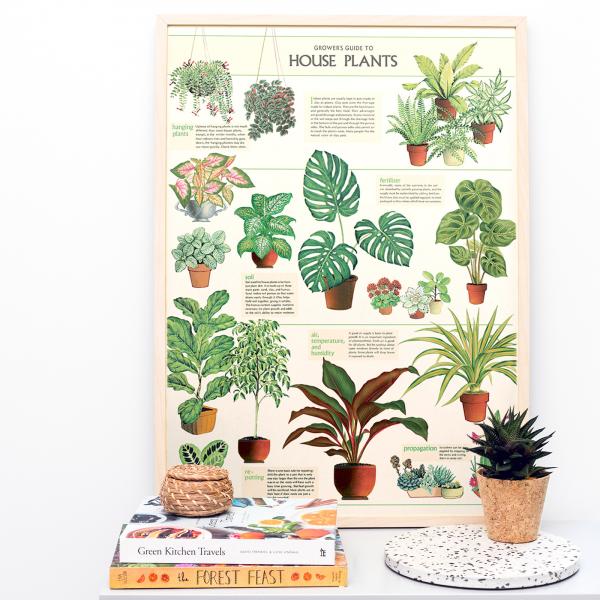 Large print - House plants