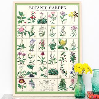 Large print - Botanic garden