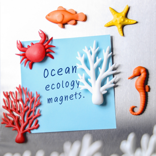Magnets - Ocean ecology